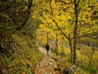 alps hiking autumn foliage