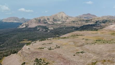 uinta mountains plateau vista