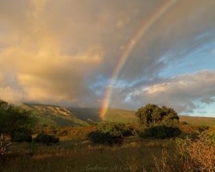 road to hana rainbow